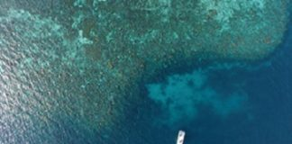 Dongsha coral reefs reveal influence of human nitrogen emissions